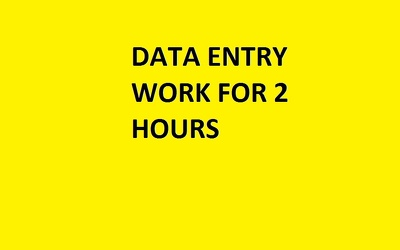 Do data entry for 2 hrs