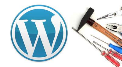 Provide an hour to fix any wordpress issue