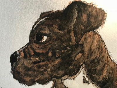 Illustrate your pet for you or a present in watercolour and ink