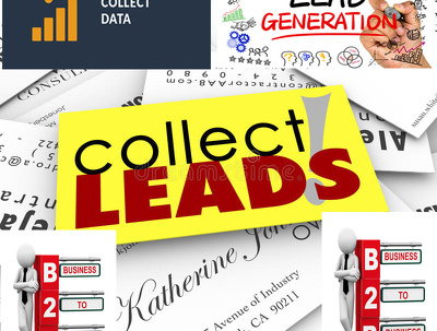 Collect 250 Targeted Leads for   Your Business.