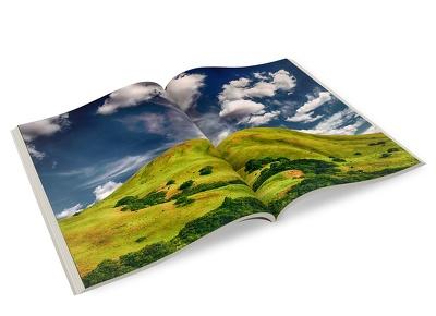 Design & produce professional brochure / catalogue / booklet