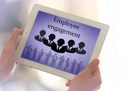Write an employee handbook for your company