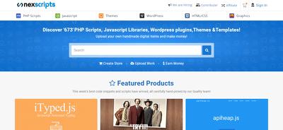 Develop Premium Fully Responsive website