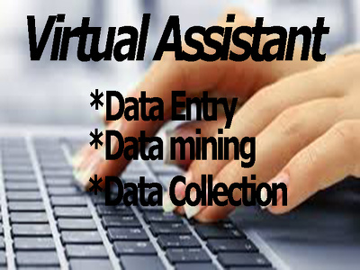 All type of data Entry for 2 hours