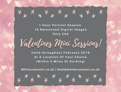 Valentines mini photography sessions!