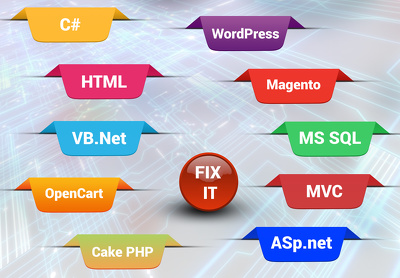 Fix 1 error in asp.net html css php wordpress or other websites