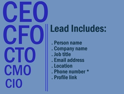 Collect 200 C-level executive valid leads