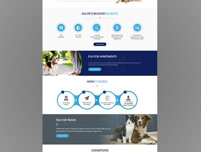 Professional and uinque PSD desgin for website