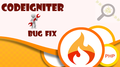 Fix any kind of bugs in codeigniter site or admin panel