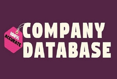 Collect 300 companies with their details data