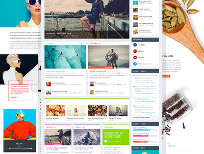 Develop functional WordPress website with amazing features