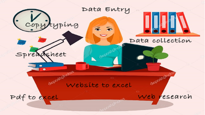 Be your data entry assistant for 2 hours
