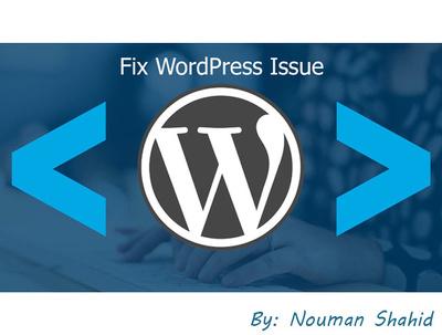 Fix wordpress website issues, errors or problems