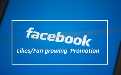 Grow facebook fan page likes professionally
