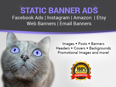 Design (3) Custom Web Banners