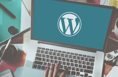 Create A Professional Wordpress Website For Your Business