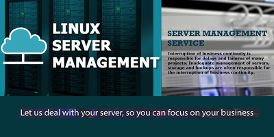 Manage Your Dedicated Server Or Vps Server