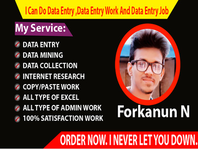 Do Data Entry ,Data Entry Work And Data Entry Job