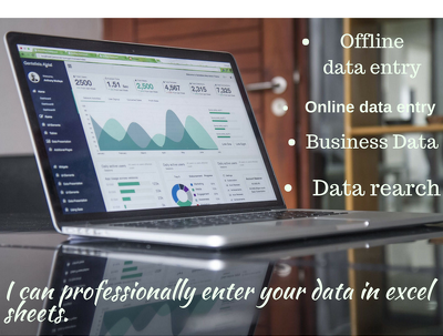 Professionally enter your data in excel sheets.