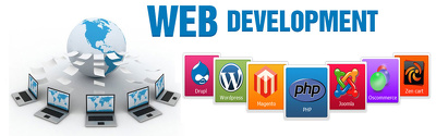 Develop your full WordPress website which is SEO friendly