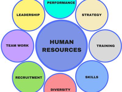 Provide a bespoke Employee Handbook in line with UK legislation