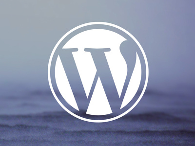 Install WordPress Theme And Make As Demo  Only 2 Hours