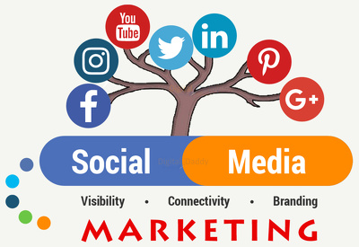 Grow, market & manage your Social Media accounts for 5 days