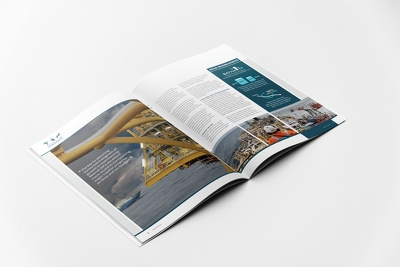 design professional magazine (cover + back + pages layout)