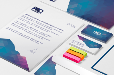 Single logo + Corporate Manual + Stationery (Free animation)