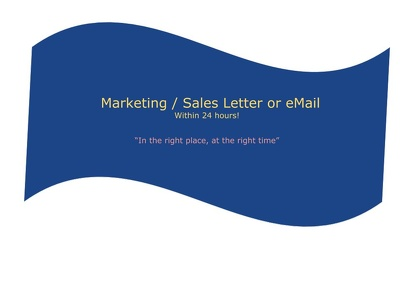 Provide you with a punchy Sales Letter within 48 hours!