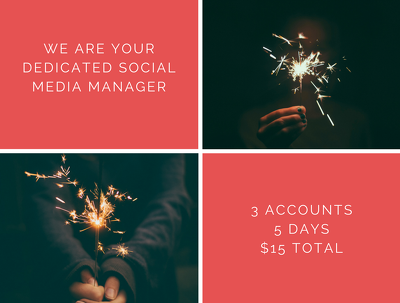 Be professional social media manager for 5 days - 3 platforms