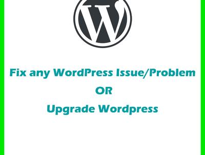 Fix any WordPress Issue/Problem or upgrade wordpress