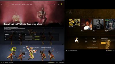 Build Music Website For Artist, Band, Record Label, Dj, Radio St