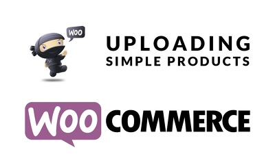 Provide Ecommerce Product Upload At Woocommerce