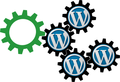 Provide 30 mins of maintenance/ updates to Wordpress Website