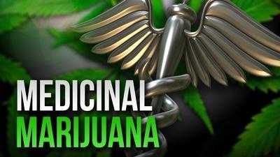Send a Medical Marijuana Dispensary Business Plan