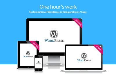 Do one hour's work customisation of Wordpress or fixing problems