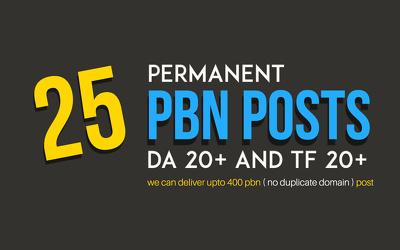 Do Permanent 25 PBN Posts - DA 20+ and TF 20+