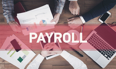 Payroll processing (for up to 5 employees) including RTI submiss