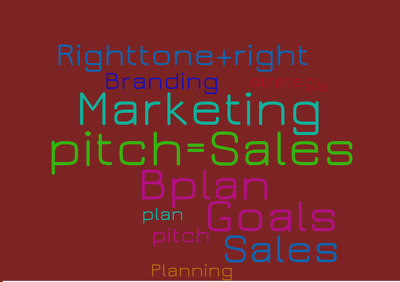 Write a sales or marketing plan/proposal for your business