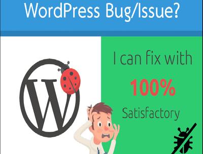Fix WordPress Issues , Errors Or Bugs
