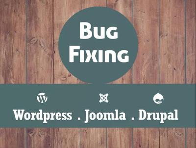 Do wordpress fix , bootstrap fix , php fix , html and css fix