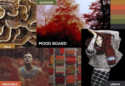 Prepare a mood board for creative guidance and design direction