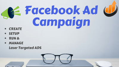 Create, setup and manage a laser targeted Facebook ad campaign