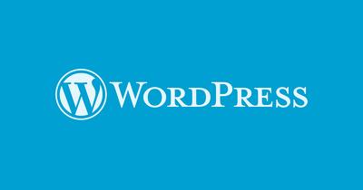 Install WordPress   Setup Theme   Setup Web hosting & Domain