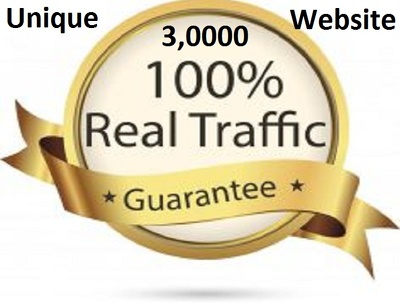 Provide 3,0000 REAL Unique Website Traffic With Low Bounce Rate