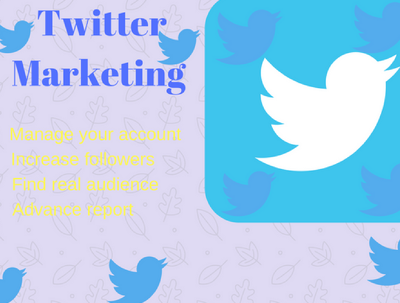 Do Twitter marketing professionally