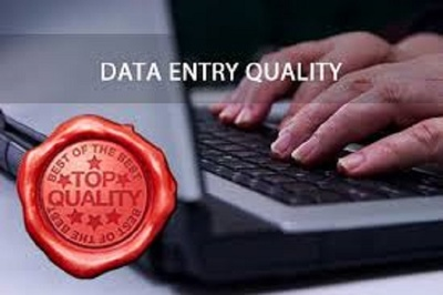 Provide high-quality data entry service for 1 hour