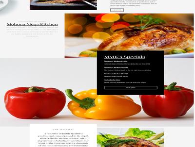 Design and build Professional WordPress Website