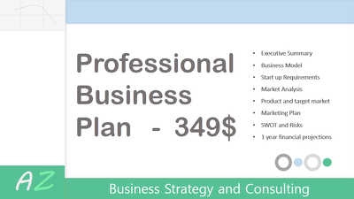 Write you an effective and professional Business Plan.